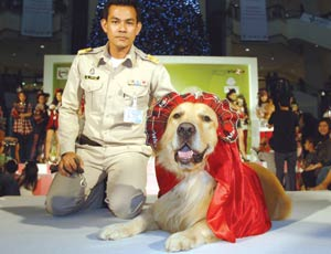 "Diamond-studded ""Santa"" outfit for one of the Princess' dogs."
