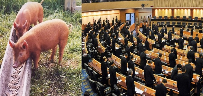 Junta's rubber-stamp parliament is a feeding trough for the generals
